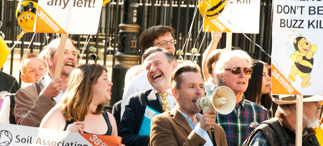 38d-bee-protest-laughing
