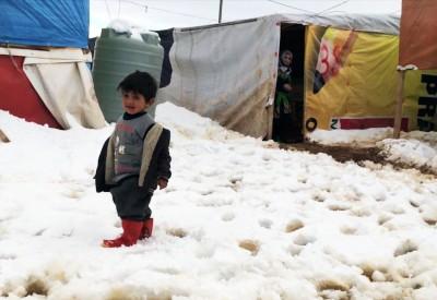 syrian winter
