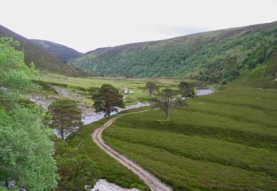 Scottish hillside. Picture: Gavindeas