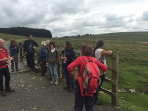 dartmoor walk 6