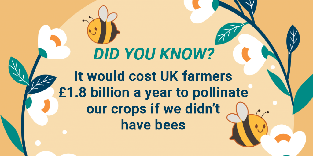 DID YOU KNOW? It would cost UK farmers £1.8 billion a year to pollinate our crops if we didn't have bees
